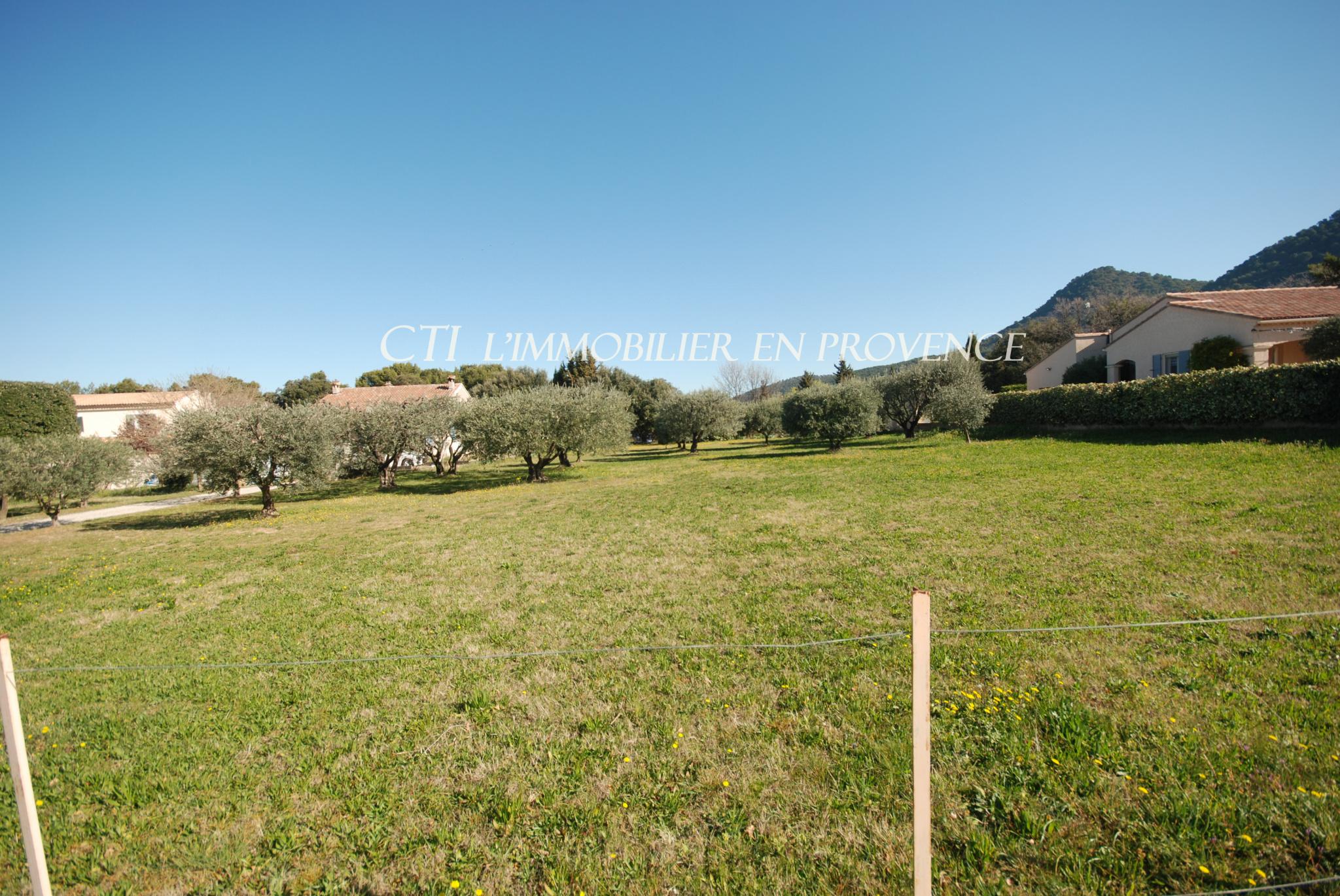 0 www.cti-provence.net vente terrain constructible séguret planté en vieux oliviers, plat
