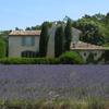 Immobilier </br>Drôme Provençale